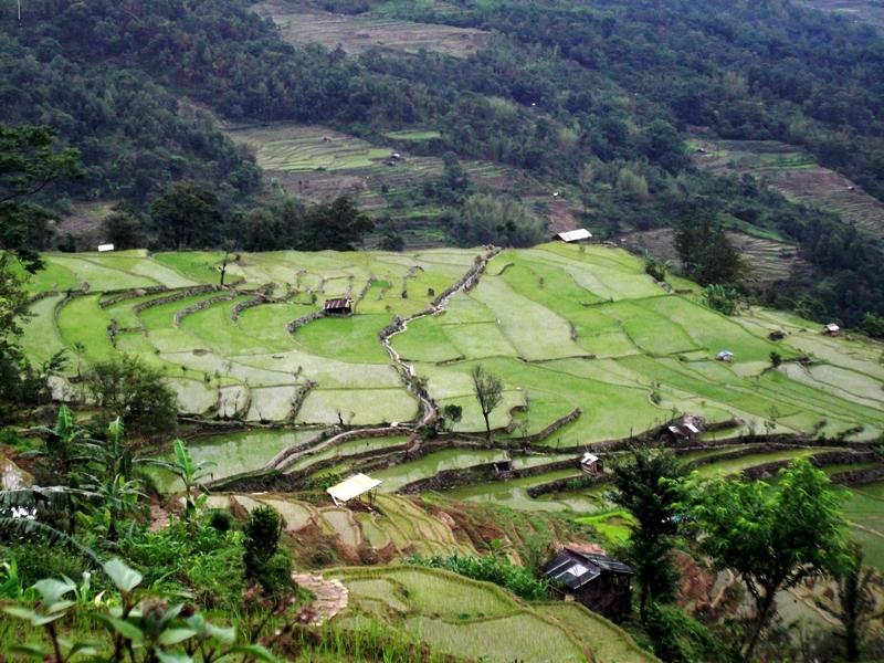 Kigwema village view